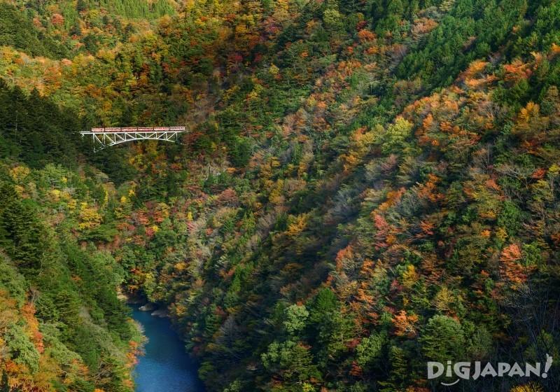 紅葉と関の沢橋梁
