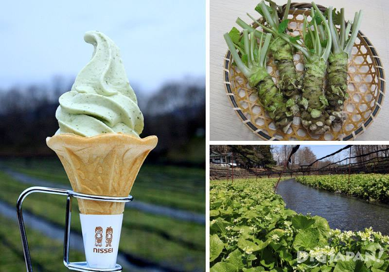 wasabi soft serve ice cream etc.