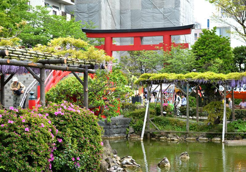 龜戶天神社庭園