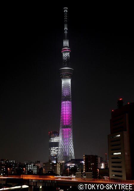 夜空下閃耀的東京晴空塔