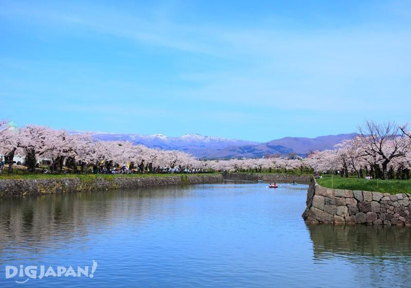 北海道五稜郭公园4