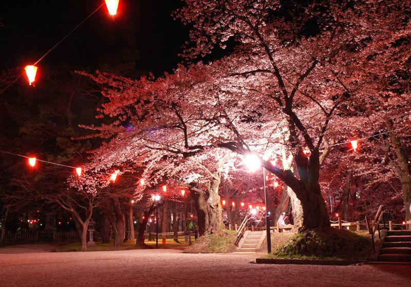 秋田县千秋公园3
