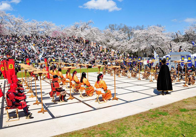 山形县天童樱花祭1