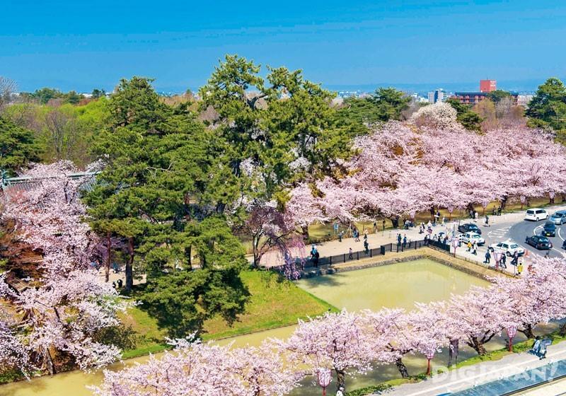 青森县弘前公园3