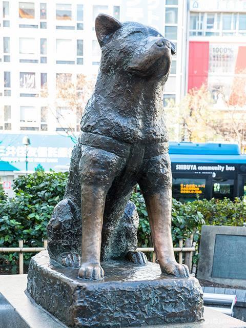 澀谷站前的忠犬八公像