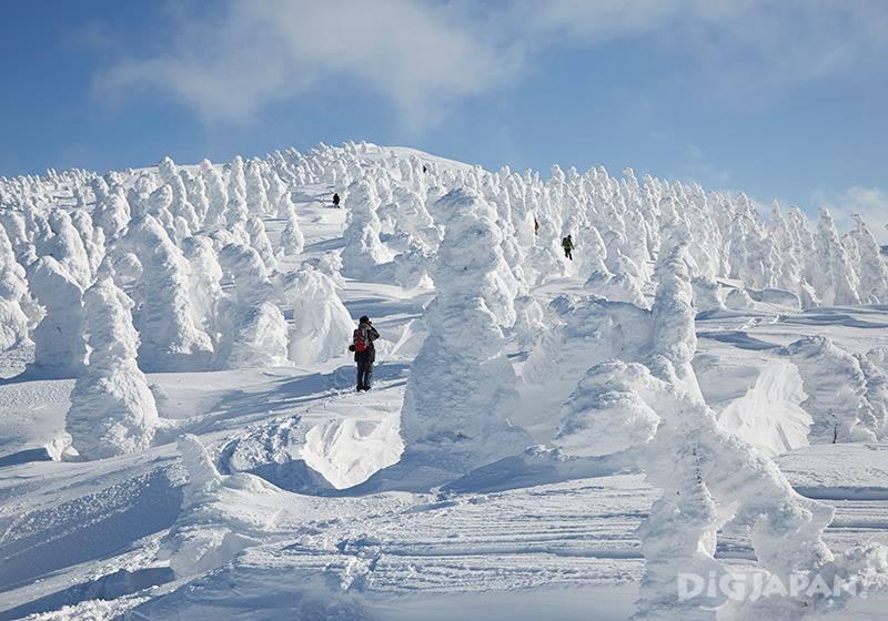 日本三大樹冰之一 森吉山