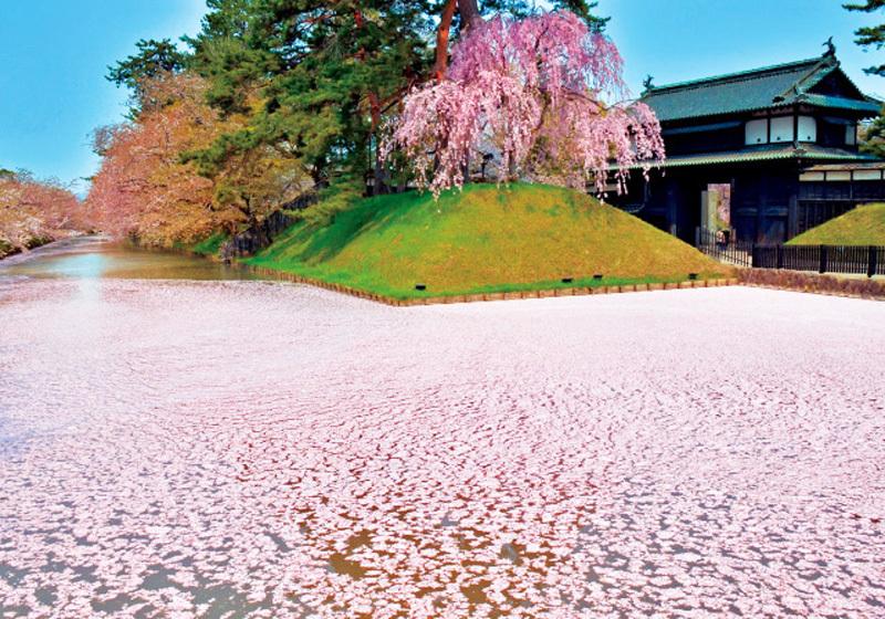 青森县弘前公园2