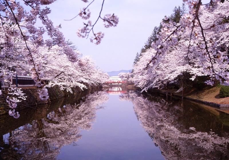 松之岬公园1