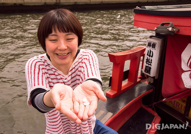 Sakura petals, yakatabune cruise