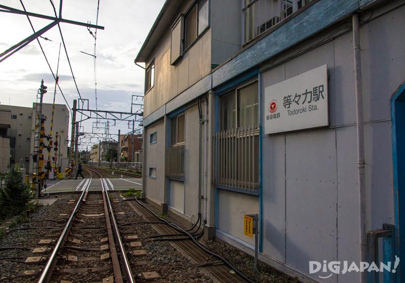 Todoroki Station