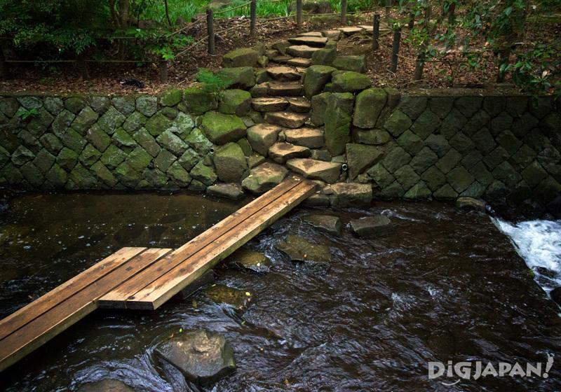 Wooden bridge, Todoroki Valley