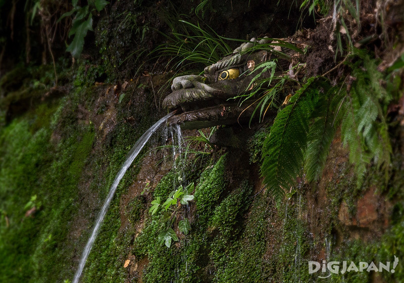 Todoroki Fudoson no Taki falls