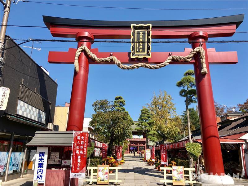 日本最古の菊祭り「笠間の菊まつり」
