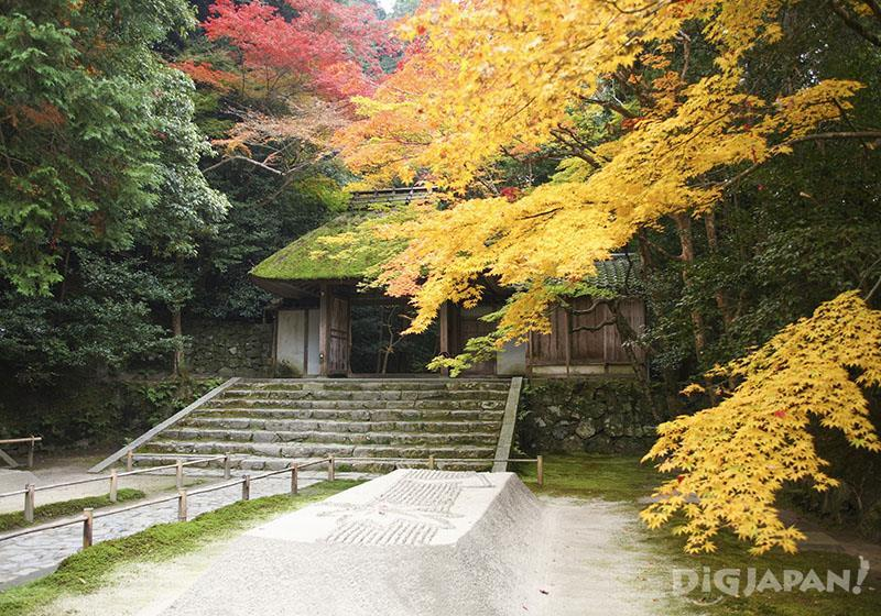 Autumn leaves at Honen-in temple, Kyoto