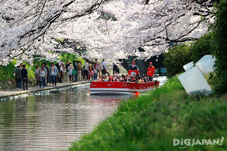 Matsukawa River Cruises spring