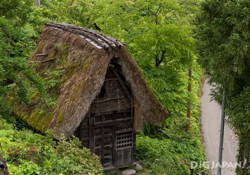 Exile Hut