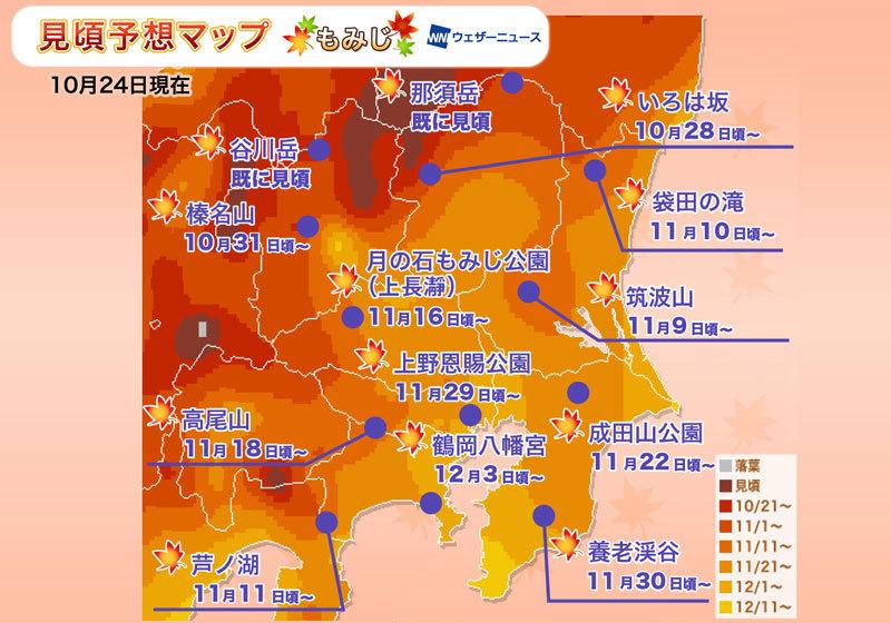 賞楓人氣區域:關東