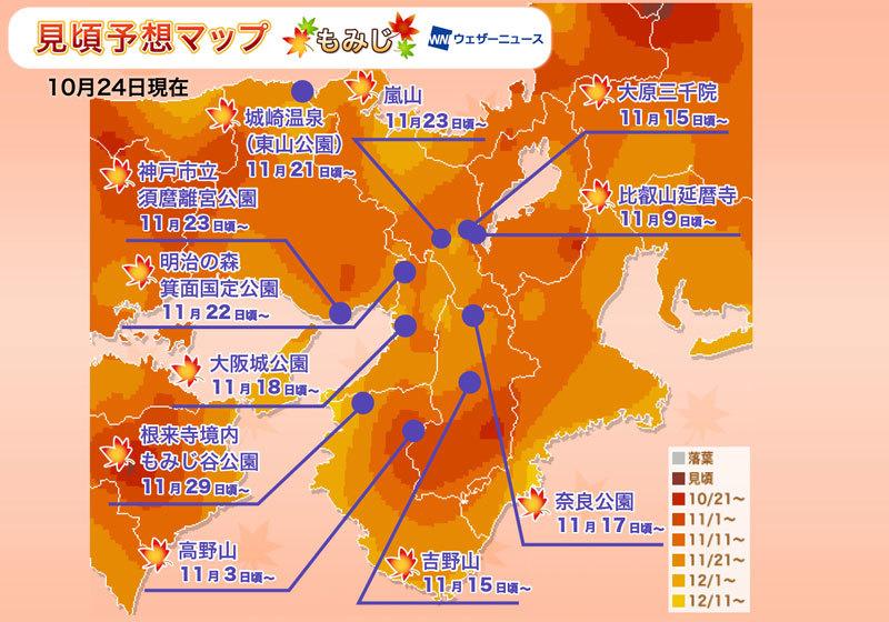 賞楓人氣區域:關西