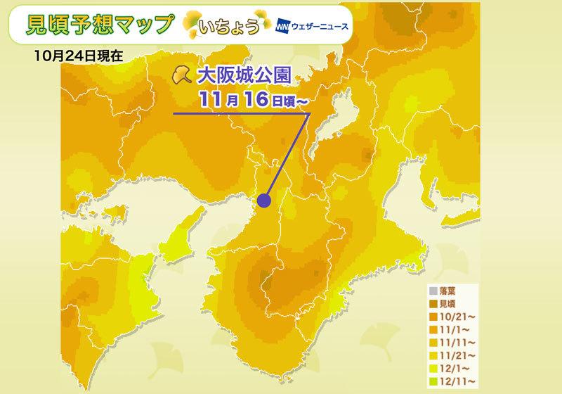 賞銀杏人氣區域:關西