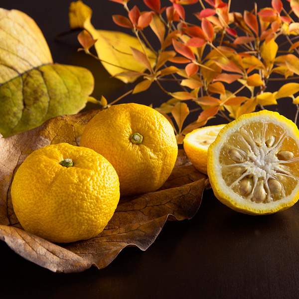 13 Ways You Can Enjoy Yuzu, Japan's Favourite Citrus Fruit