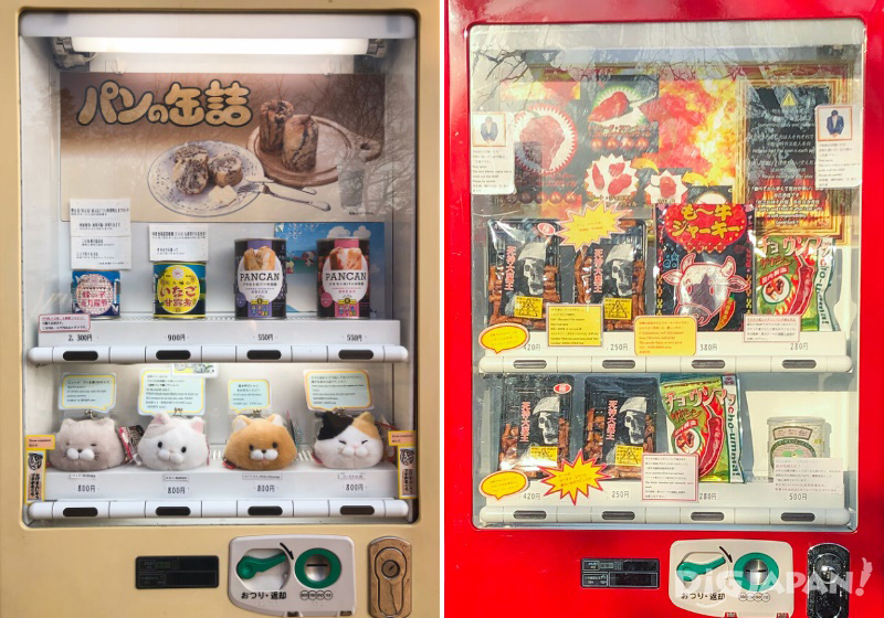 Bee Larvae, Bread in a Can and More vending machine in Inokashira Park