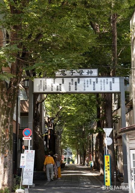 Zoshigaya zelkova road