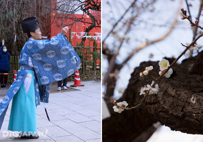 Priest and plum blossoms during setsubun