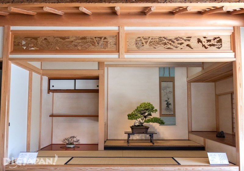 Reproduction of bonsai displays inside Japanese rooms