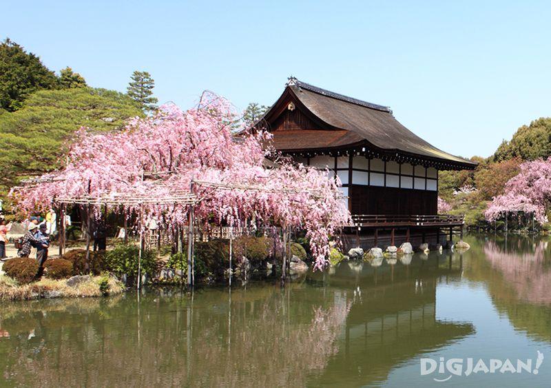 平安神宫2