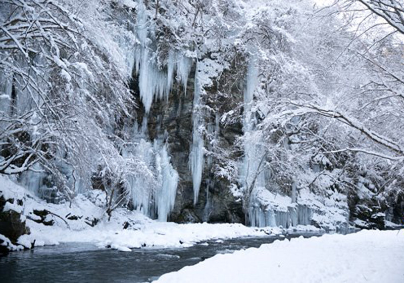 厳冬期の三十槌の氷柱