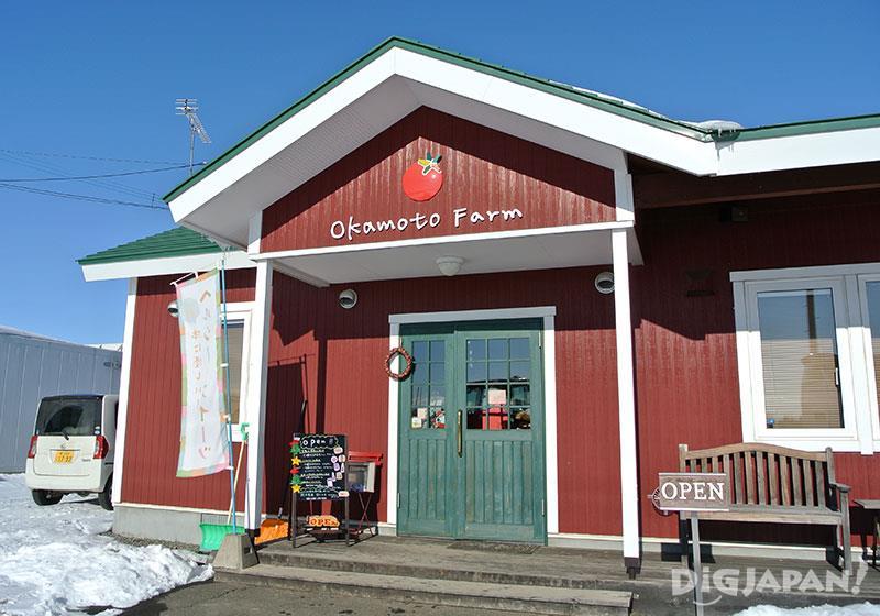 มะเขือเทศรางวัลระดับโลกที่ Okamoto Farm