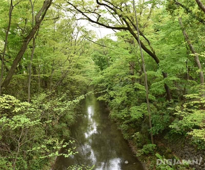 玉川上水水道