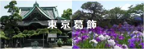 東京葛飾區信息大匯總