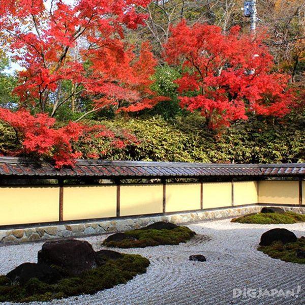 春風萬里荘の庭園で紅葉を愛でる