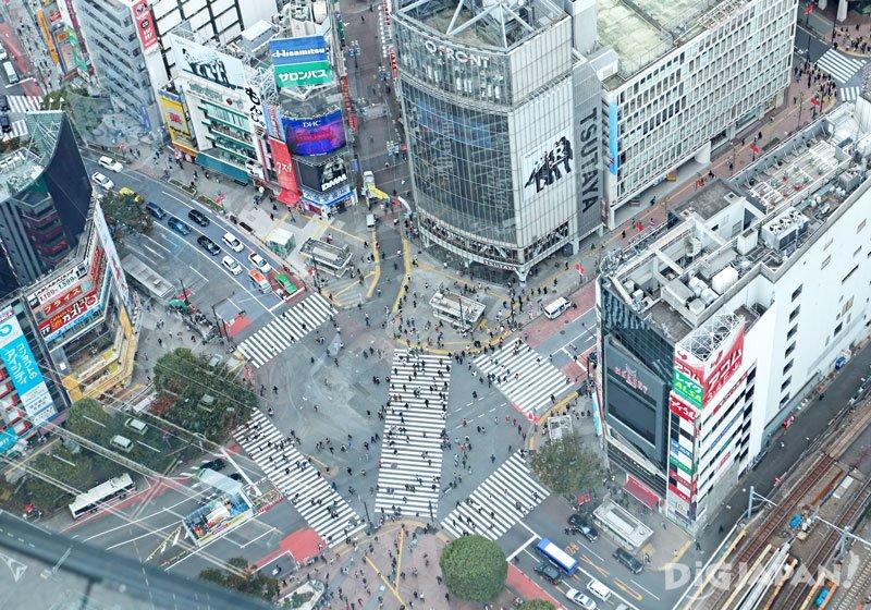 屋頂 SHIBUYA SKY03