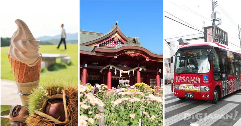 What to Do During the Kasama Chrysanthemum Festival in Ibaraki