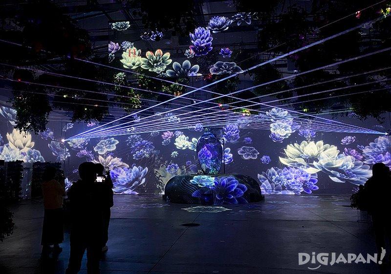 HANA BIYORI_花卉與數位藝術結合的投影秀2
