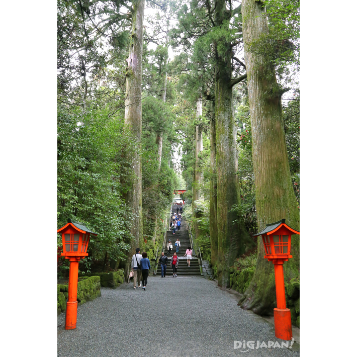 The main path leading up to Hakone Shrine