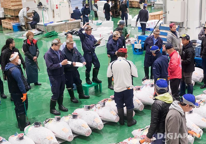 Tuna auctions at Toyosu market, Tokyo