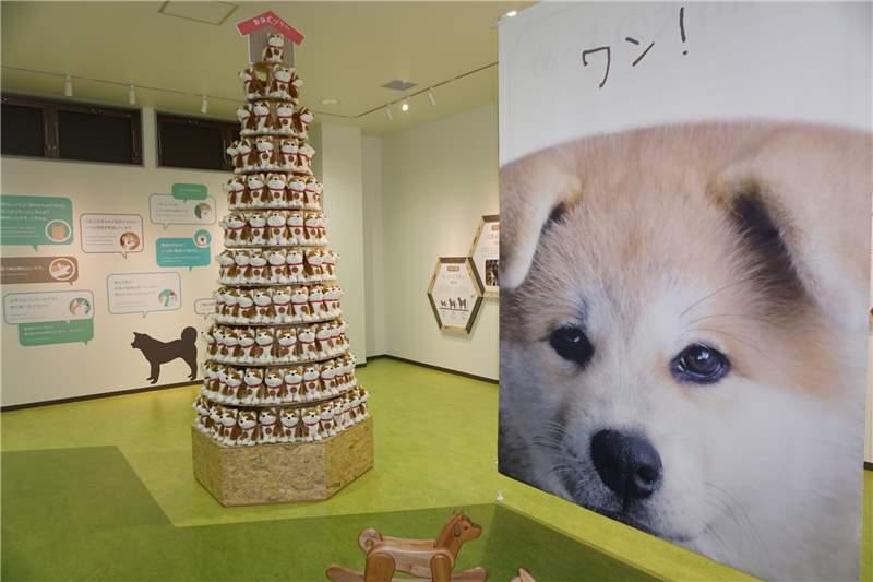 秋田犬之里內部1