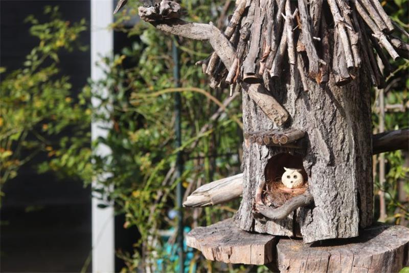 杉並區-阿佐ヶ谷「龍貓的家」