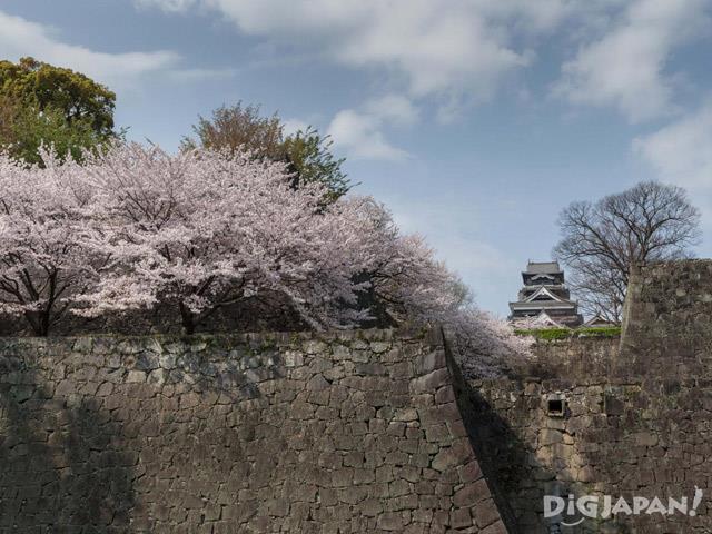 熊本城(熊本県)