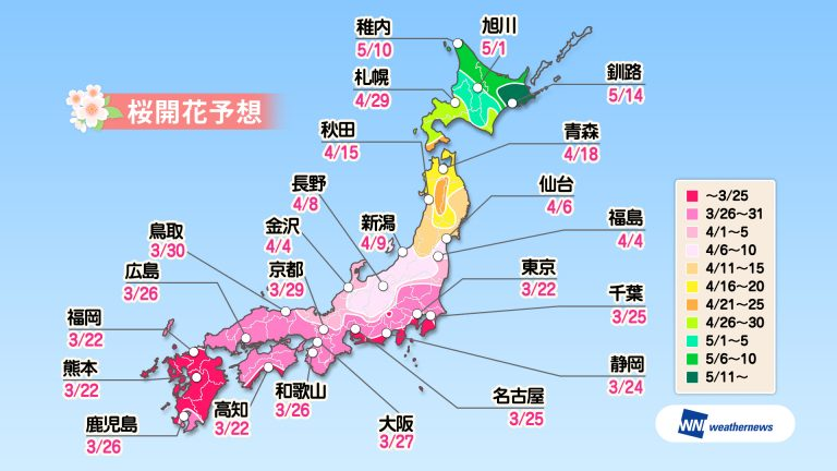 日本主要都市 櫻花開花預測圖