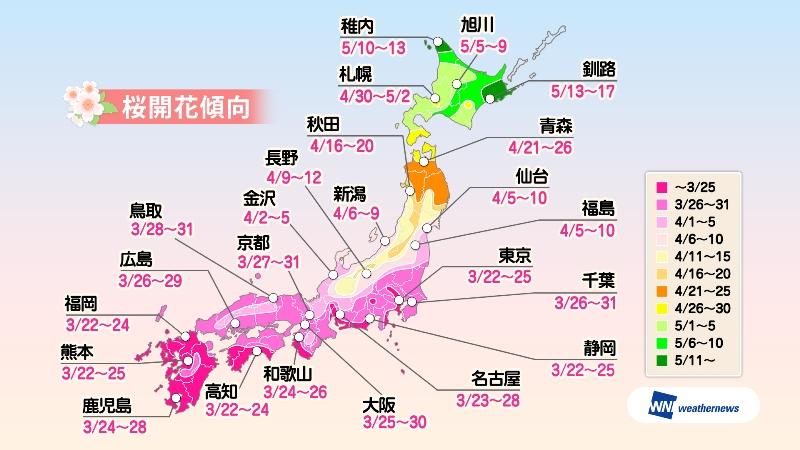 日本主要都市 櫻花開花預測